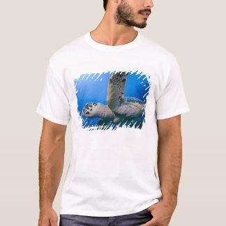 T-shirt Les Îles Caïman, petite Île Caïman, sous-marine