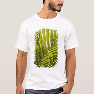 T-shirt Les Îles Maurice, Îles Maurice centrales, Moka,