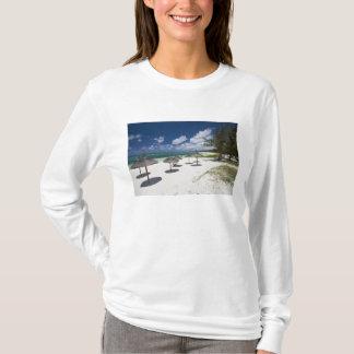 T-shirt Les Îles Maurice, Îles Maurice orientales, jument