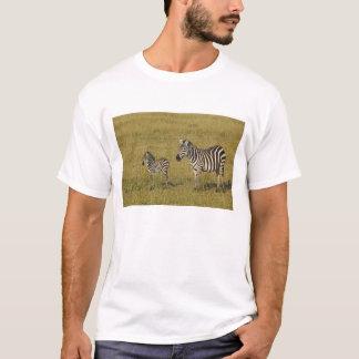 T-shirt Les zèbres de Burchell de mère et de bébé, Equus