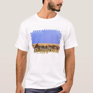 T-shirt Les zèbres et le gnou de Burchell dans grand