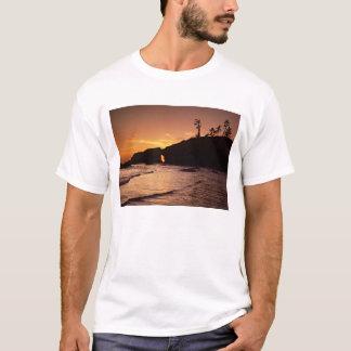 T-shirt L'état de Washington des Etats-Unis, Parc national