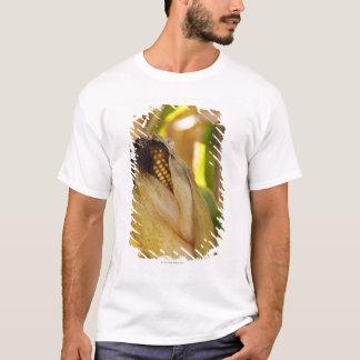T-shirt L'état des Etats-Unis, New-York, le Hudson, épi de