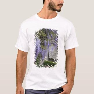 T-shirt L'Europe, Autriche, Salzbourg Stadt, Salzbourg,
