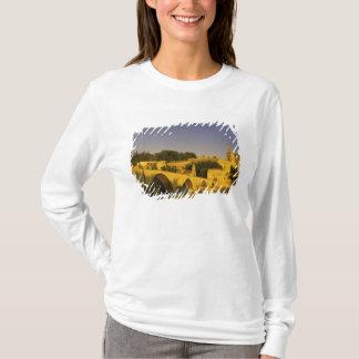 T-shirt L'Europe, France, Provence, Avignon. St de Pont, 2