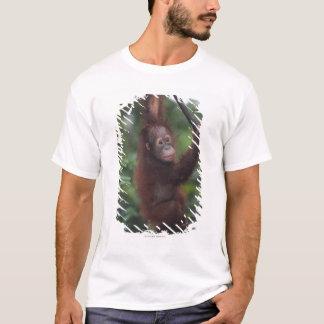 T-shirt Liane d'escalade de bébé d'orang-outan
