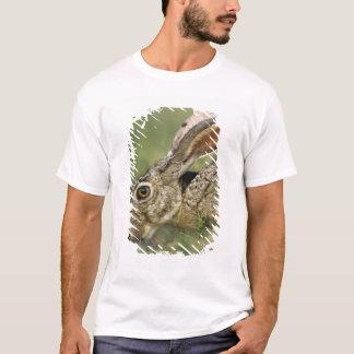 T-shirt Lièvre à queue noire, californicus de Lepus,