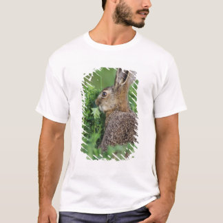 T-shirt Lièvres de Brown, europaeus de Lepus, jeune