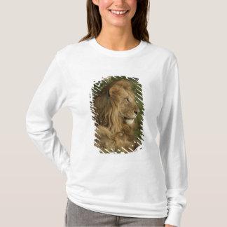 T-shirt Lion, Panthera Lion, Mara inférieur, masai Mara