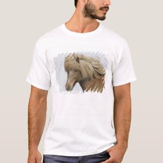 T-shirt L'Islande. Portrait d'un cheval islandais