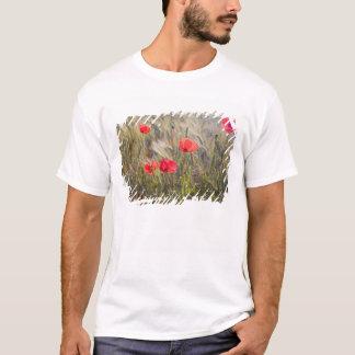 T-shirt L'Italie, la Toscane, les pavots d'été et le blé