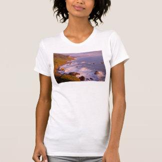 T-shirt Littoral de séquoias, la Californie
