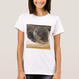 T-shirt Loutre somnolente