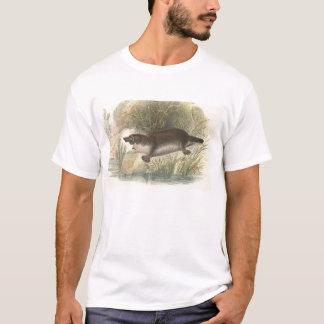 T-shirt Lydekker - ornithorynque