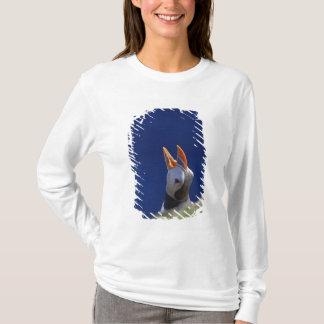 T-shirt Macareux atlantique (arctica de Fratercula) 4