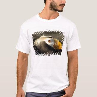 T-shirt Macareux crêté captif, centre de vie marine de
