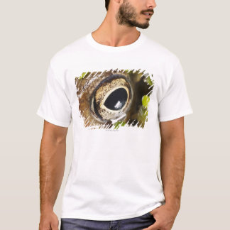 T-shirt Macro ; Horizontal ; Couleur ; Couleur ; Personne