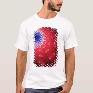 T-shirt Mandelbrot 4
