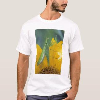 T-shirt Mante de prière femelle avec le sac d'oeufs dessus