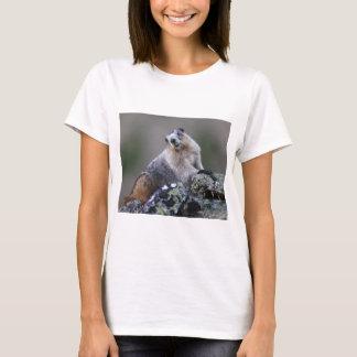 T-shirt marmotte