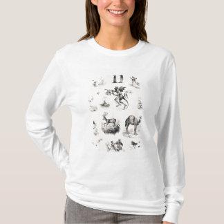 T-shirt Marquez avec des lettres D d'une amorce