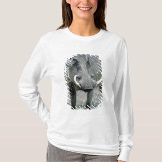 T-shirt Masai Mara d'africanus de Phacochoerus de Warthog)
