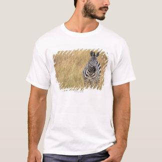 T-shirt Masai Mara, Kenya