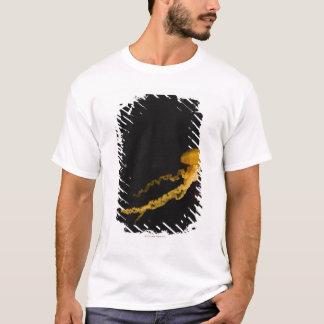 T-shirt Méduses 2