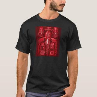 T-shirt Méduses de boîte