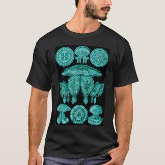 T-shirt Méduses - Discomedusae