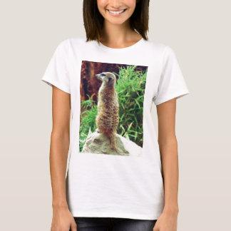 T-shirt Meerkat doux