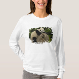 T-shirt Melanoleuca d'Ailuropoda de bébé de panda géant)