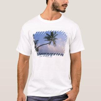 T-shirt Mer et palmier