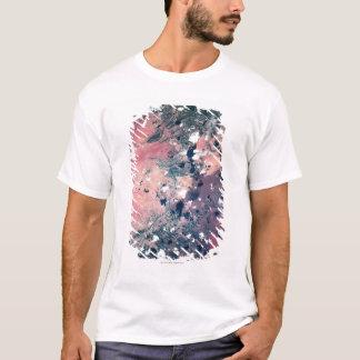 T-shirt Mettez à la terre du satellite 7