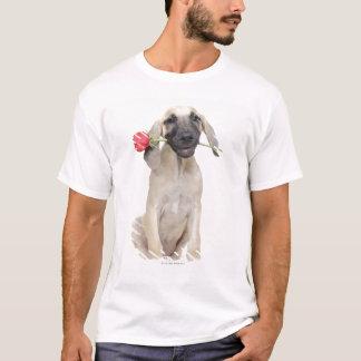 T-shirt mignon, admiration, romance, amour,