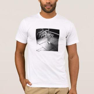 T-shirt Mimosas