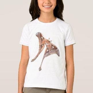T-shirt mite de hercule