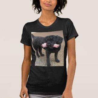 T-shirt Mon chien Romeo