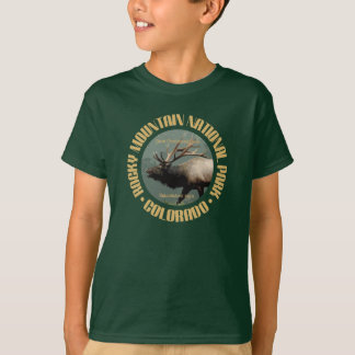 T-shirt Montagne rocheuse NP