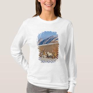 T-shirt Montagnes de Big Horn, chevaux fonctionnant dans