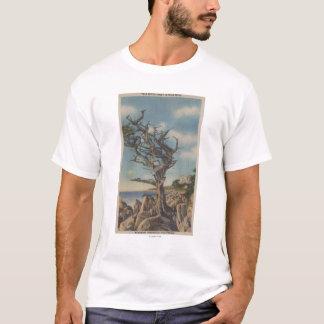 T-shirt Monterey, CA - vieil arbre de sorcière sur 17
