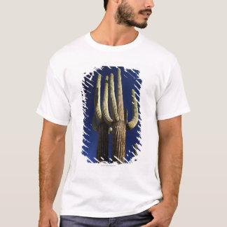 T-shirt Monument national de cactus de tuyau d'organe en