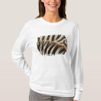 T-shirt Motif des rayures du zèbre de Burchell, Equus