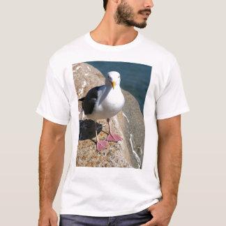 T-shirt Mouette, baie de Morro, la Californie