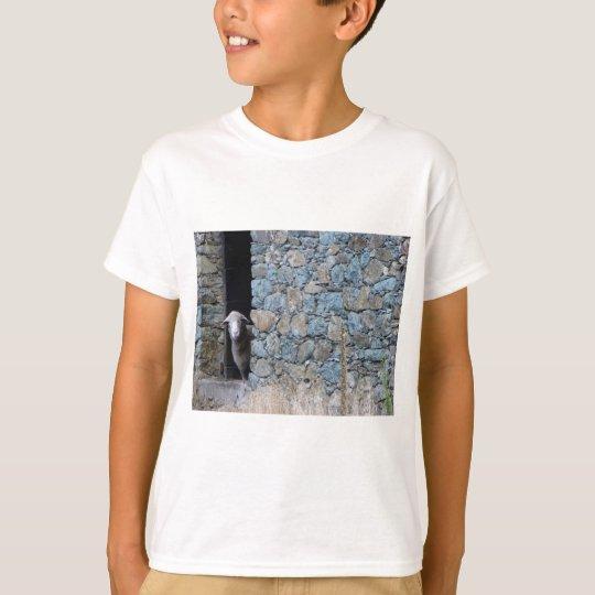T-shirt Mouton Corse