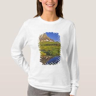 T-shirt Mt Clements se reflète dans la petite piscine chez