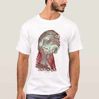 T-shirt Musculoskeleton de la tête et du cou 4