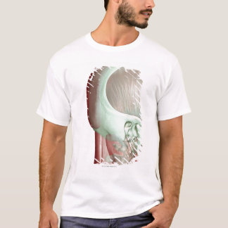 T-shirt Musculoskeleton de la tête et du cou 8