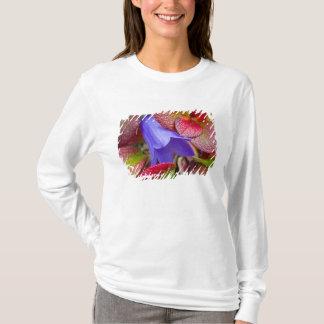 T-shirt N.A., Etats-Unis, Alaska.  Jacinthe des bois dans