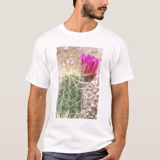 T-shirt N.A., Etats-Unis, AZ, Phoenix, abandonnent